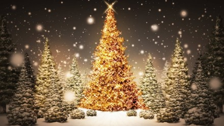 Glowing-Christmas-Trees_FullHDWpp.com_-728x409